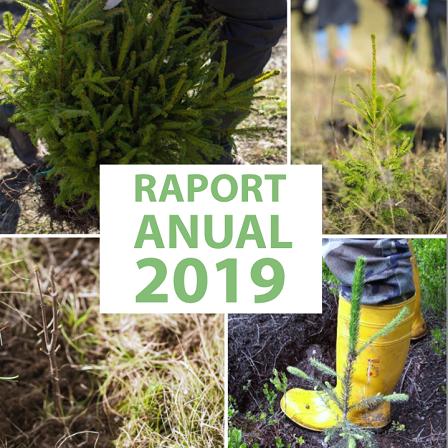 raport-2019