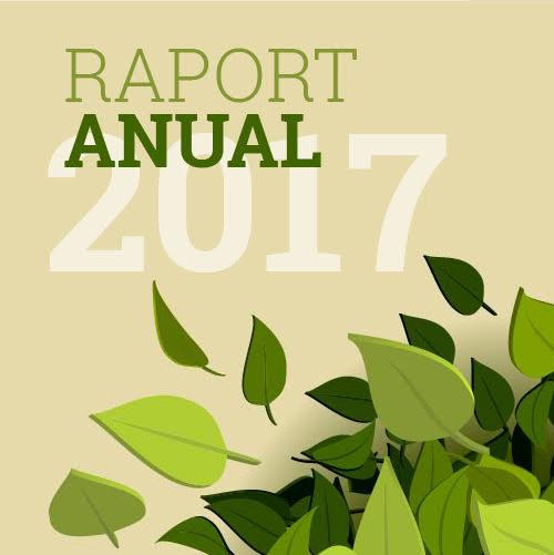 raport-anual-2017