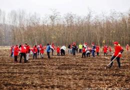 Din respect pentru mediu, Kaufland România a susținut o nouă acțiune de împădurire
