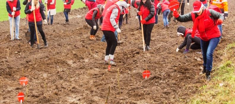 Solidaritatea pentru mediu i-a ajutat pe voluntari să învingă ploaia de la Peștera